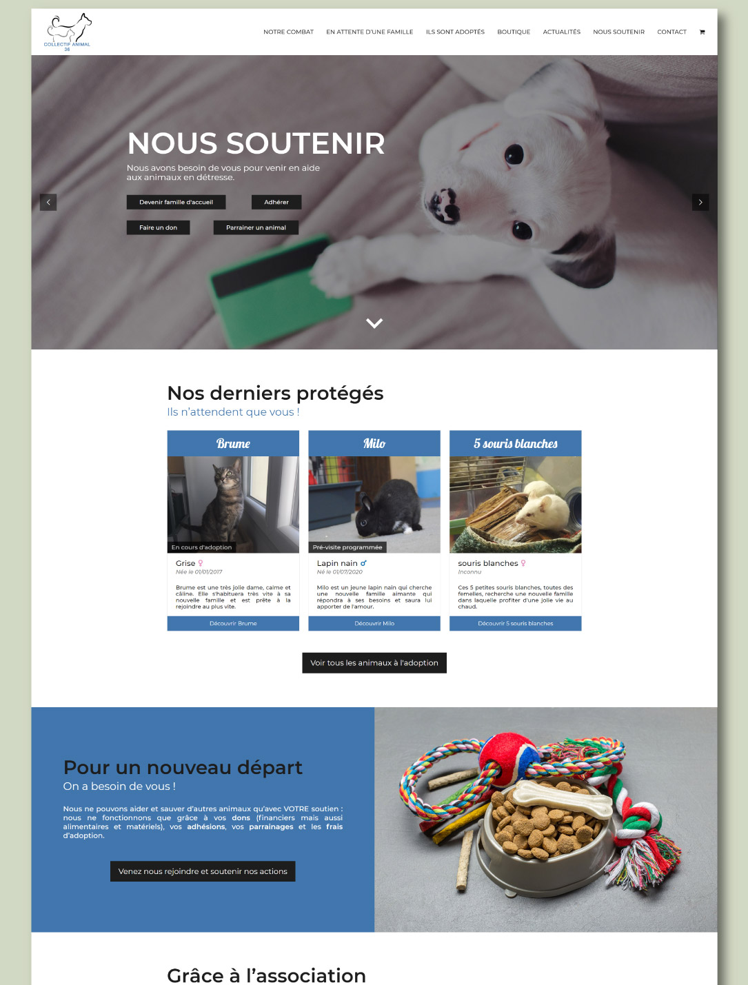 Site pour association de protection animale