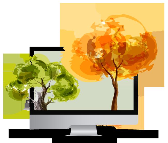 Com'kuat planter un arbre pour la planète